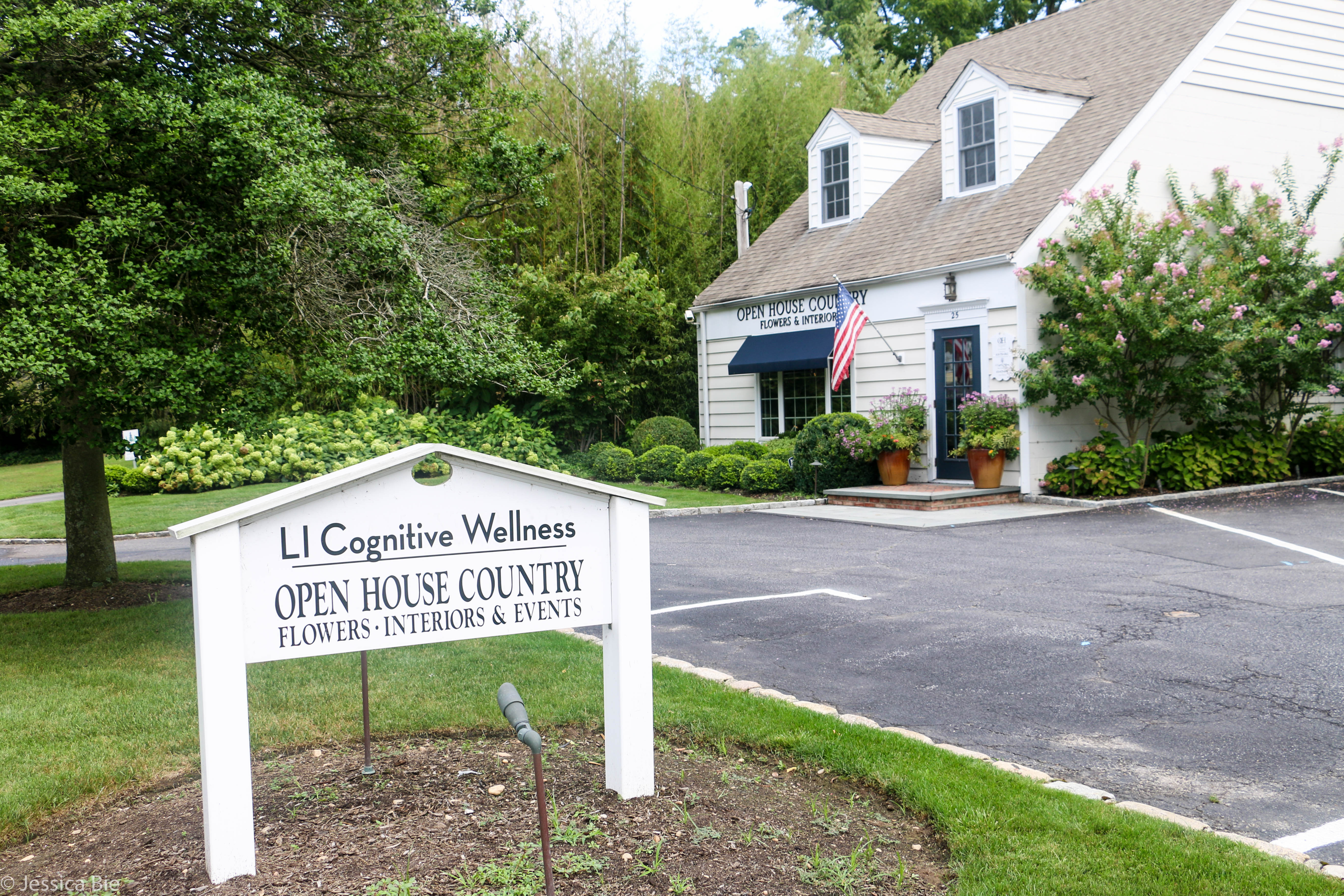 Dialectical Behavior Therapy Long Island Ny